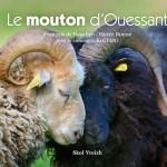 Couverture du livre Le Mouton d'Ouessant